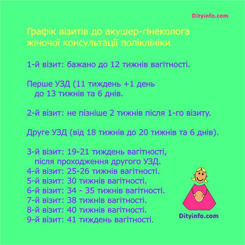 12_tyzhden_vagitnosti_4.jpg (109.01 Kb)