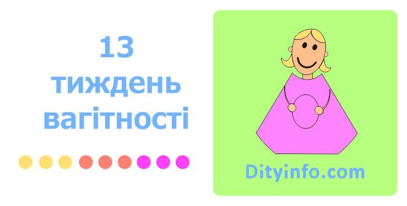 13_tyzhden_vagitnosti_1_foto.jpg (43.27 Kb)