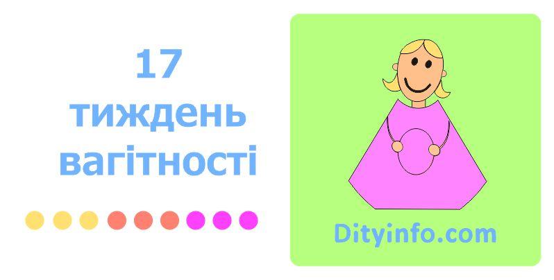 17_tyzhden_vagitnosti_1_foto.jpg (43.15 Kb)