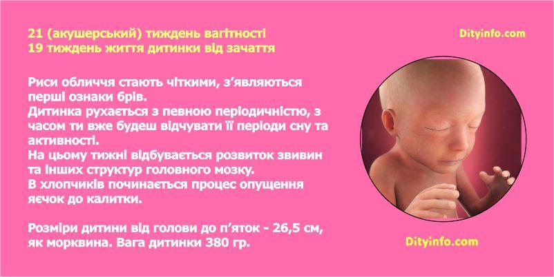 21_tyzhden_vagitnosti_2_foto.jpg (61.84 Kb)
