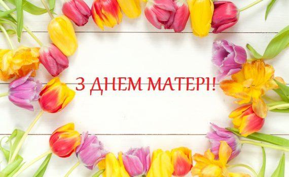 2736_vesna_beautiful_fresh_colorful_wood_tiulpany_tulips_bright_2_0x350.jpg (35.88 Kb)