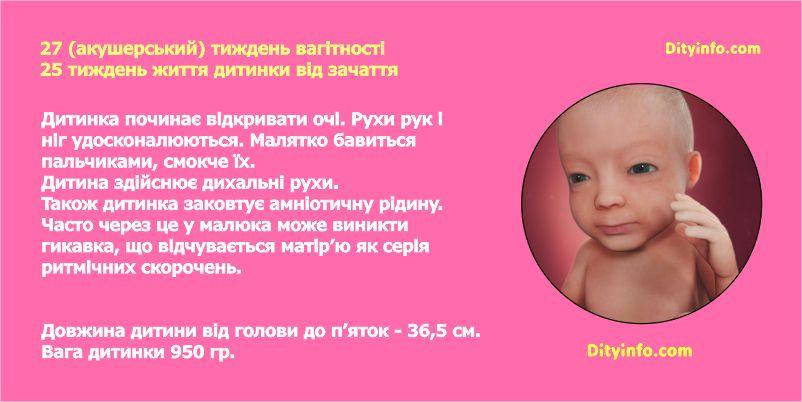 Двадцять сьомий тиждень вагітності