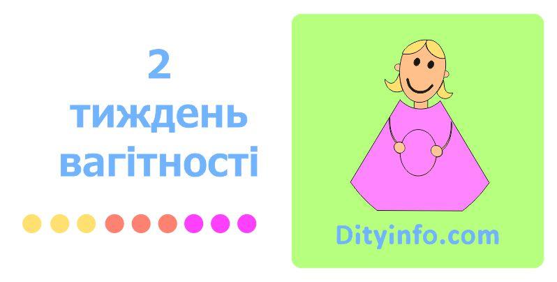 2_tyzhden_vagitnosti_1_foto.jpg (42.92 Kb)