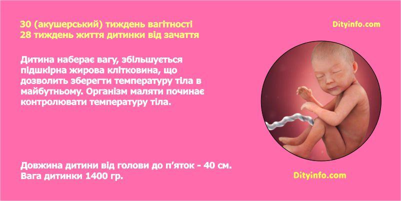 30_tyzden_vagitnosti_3-1.jpg (52.15 Kb)
