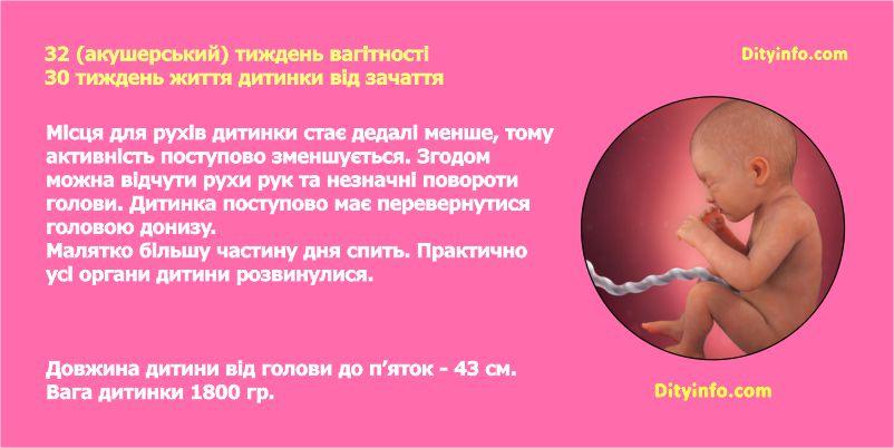 Тридцять другий тиждень вагітності