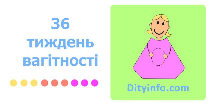 36_tyzden_vagitnosti_1.jpg (43.86 Kb)
