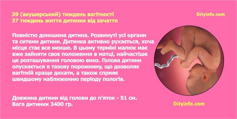 Тридцять дев'ятий тиждень вагітності