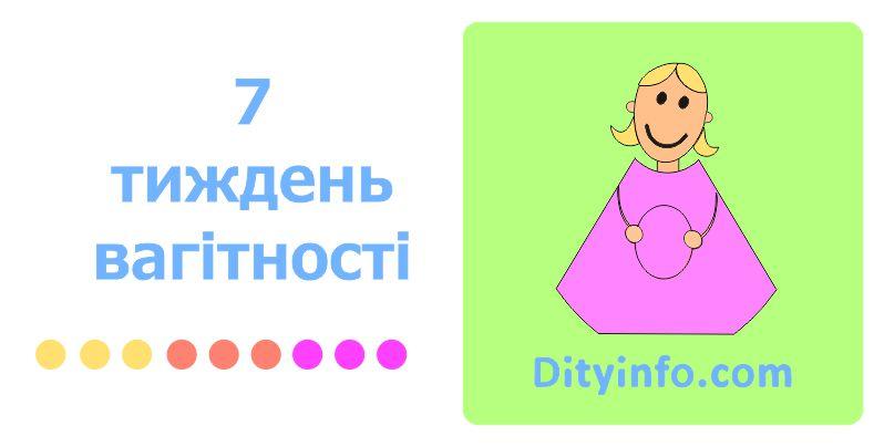 7_tyzhden_vagitnosti_1_foto.jpg (42.85 Kb)