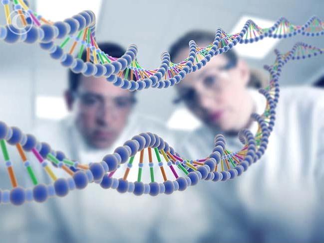 Консультація генетика при плануванні вагітності