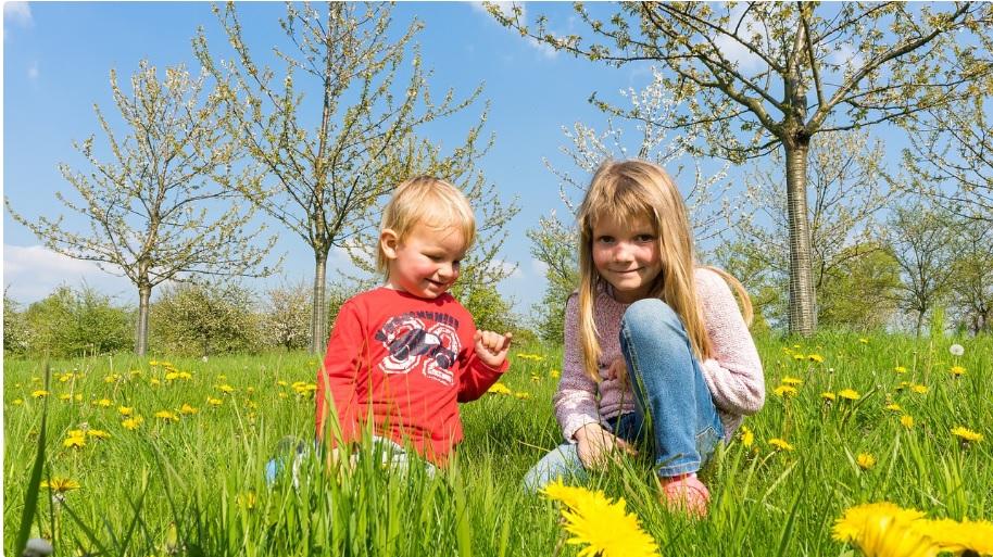 10 кращих віршів про весну для дітей